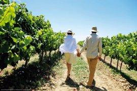 Turismo presenta un estudio de las actividades innovadoras que más interesan a los enoturistas que visitan La Rioja