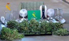 Desmantelados en Burgos dos laboratorios 'indoor' de producción sistemática de marihuana