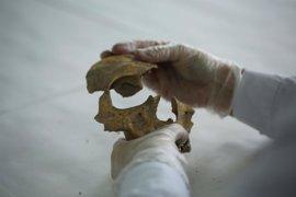 Los restos humanos de Castillejo del Bonete, en Terrinches, son del Siglo II antes de Cristo