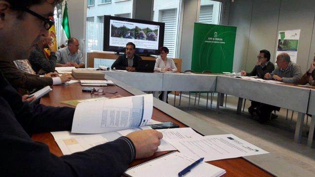 Encuentro de expertos sobre movilidad sostenible.