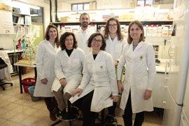 Diseñan un parche para administrar a través de la piel fármacos para tratar a pacientes con Alzheimer