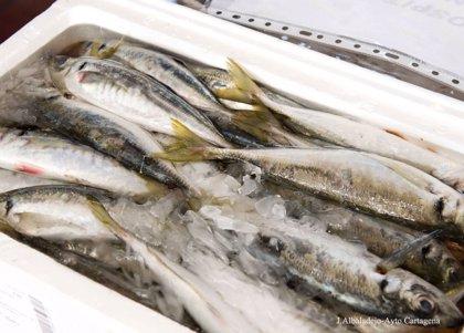 Crean una herramienta para minimizar la exposición a contaminantes químicos derivados del consumo de pescado
