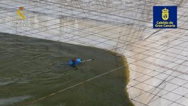 Rescatada una Garza Real atrapada en una balsa de agua en Santa María de Guía (Gran Canaria)
