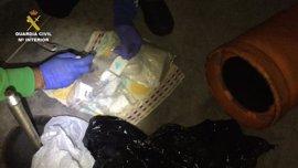Desmantelan en Almería una red de tráfico de droga con 24 detenidos y el decomiso de 2.700 plantas de marihuana