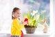 Cómo cuidar nuestras plantas: enseña a tus hijos en casa