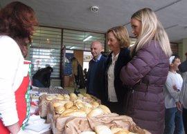 La Junta reparte 20.818 botellas de aceite de oliva a escolares en un desayuno saludable por el Día de Andalucía