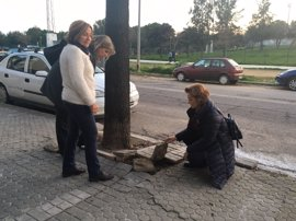 """PP lamenta """"daños en el pavimento"""" de la avenida de Dinamarca de Sevilla, """"totalmente abandonada y degradada"""""""