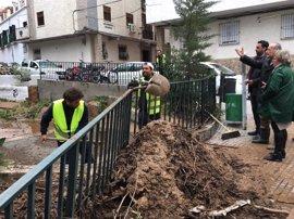 Los servicios municipales del Ayuntamiento de Málaga atienden cerca de 250 incidencias por el temporal