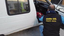 Recuperados en Estepa parte de 4.000 kilos de aceitunas sustraídos en Palma del Río