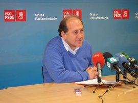"""Leiceaga recuerda que fue elegido para """"hacer oposición al PP"""""""