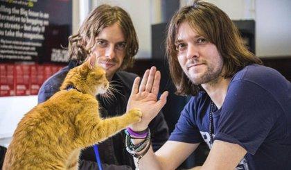 Celebra el Día Internacional del Gato con Un gato callejero llamado Bob