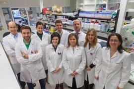 Investigadores del CIMA hallan un gen crítico en el desarrollo de cáncer de pulmón y páncreas