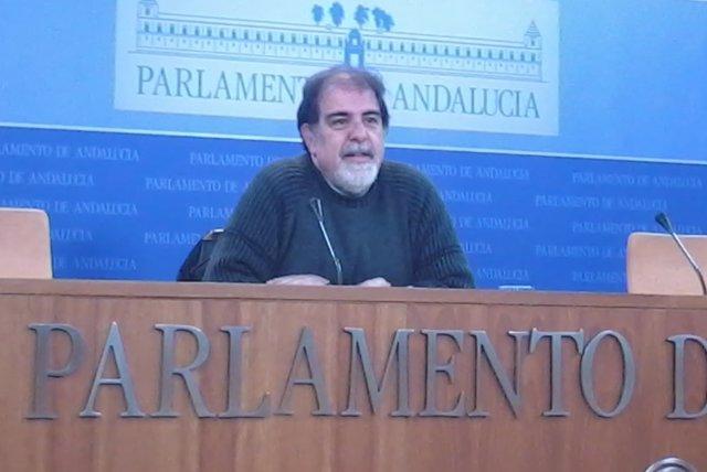El diputado autonómico de Podemos Andalucía Jesús Romero