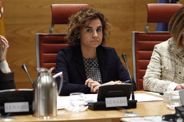 La ministra de Sanidad, Dolors Montserrat, comparece en el Senado