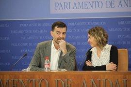 """IULV-CA ve """"sobrepasado"""" el modelo de elección de las Medallas de Andalucía y pide que participe el pueblo"""