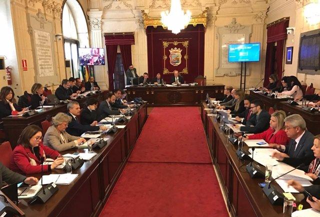 Pleno de Málaga. Enero 2016