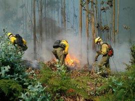 La Rioja registra un nuevo descenso del número de incendios durante 2016