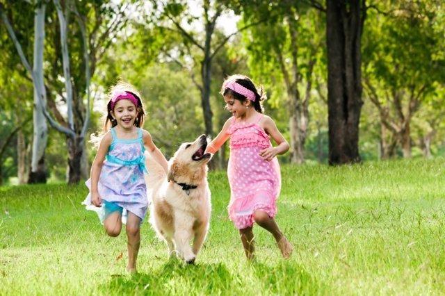 Trucos para evitar que los perros muerdan a los niños