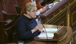 Ángeles Álvarez en el Congreso