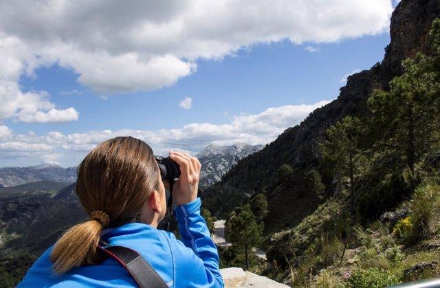 La provincia de Cádiz se promociona como destino de turismo ornitológico