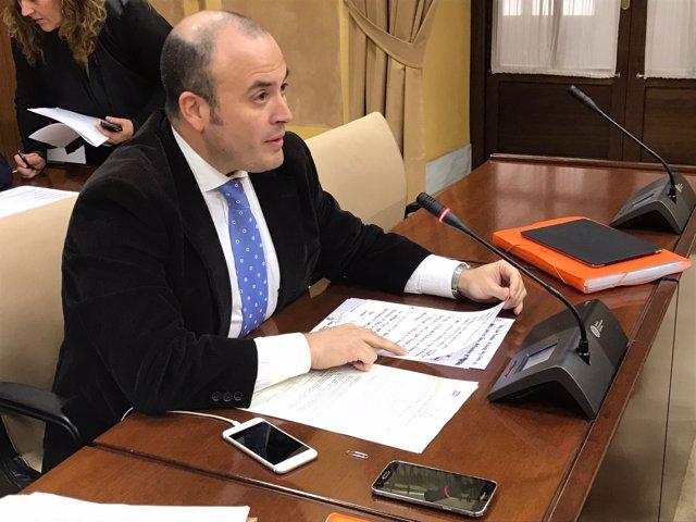 El diputado de Cs Julio Díaz en comisión parlamentaria