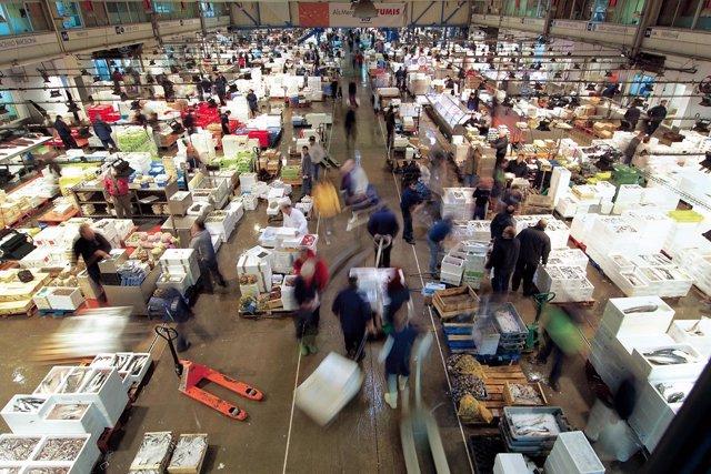 Mercabarna. Mercado del pescado