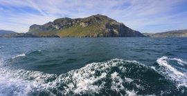 Liendo y SEO/BirdLife protegerán la única colonia de buitre sobre un acantilado marino en España