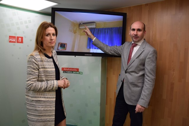 PSOE Conejo diputación centro guadalmedina daños antonia garcía diputada PSOE