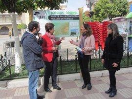Diputación habilita dos nuevas rutas en Moriles y Montilla dentro del programa 'Paisajes con Historia'