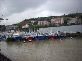El sector pesquero vasco invierte 750.000 euros para conservar los recursos biológicos marinos
