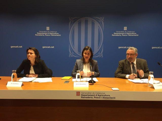 La consellera M.Serret explica un caso de gripe aviar en Catalunya