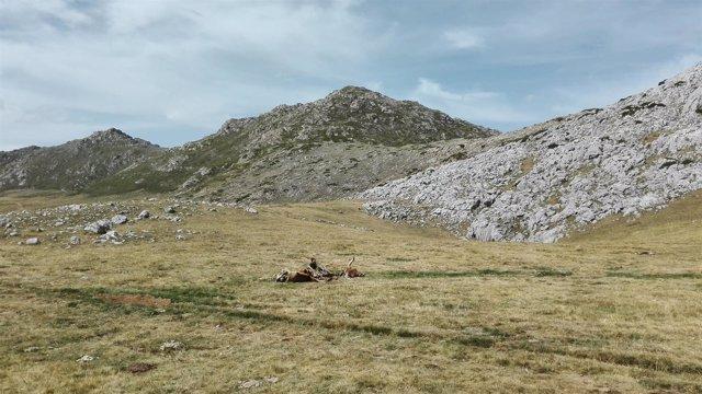 Turismo Rural, Asturias, Somiedo, Ruta, Senderismo, Lagos de Saliencia