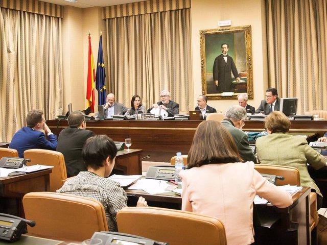 Fundación Española de la Tartamudez en el Congreso