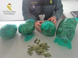 Intervenidos 1,6 kilos de hoja de coca en el aeropuerto de Almería a una pasajera