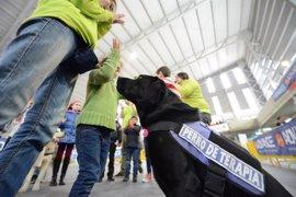 Caja Rural organiza un taller asistido con perros para concienciar sobre el acoso escolar en Gijón