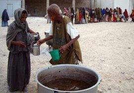 El presidente de Somalia declara la situación de desastre nacional a causa de la sequía