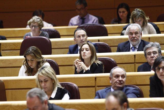 Senadores del PP