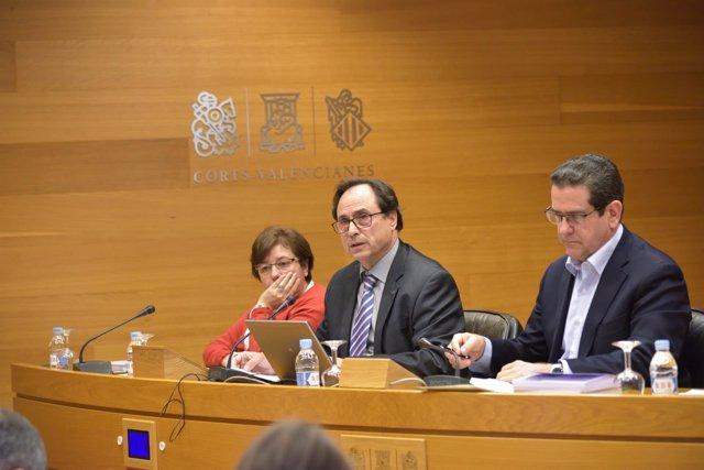 Soler en la Comisión de Economía, Presupuestos y Hacienda