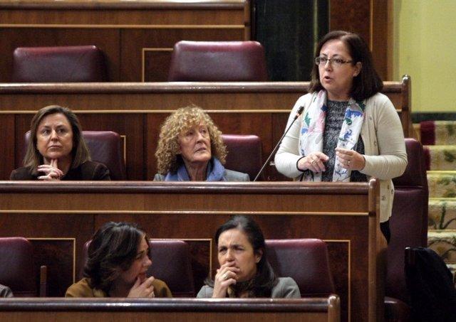 María Jesús Moro, portavoz de Justicia del PP