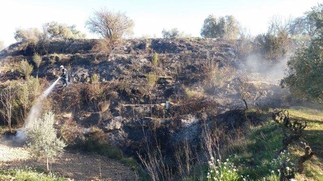 Zona que ha ardido en Valdezaíl, en Caspe (Zaragoza)