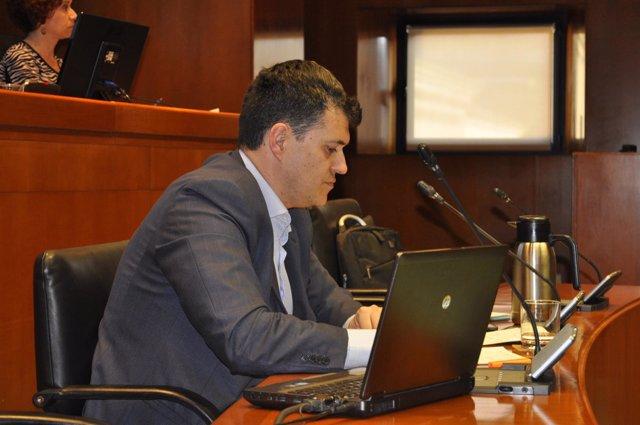 El director general Joaquín Palacín ha comparecido esta tarde en las Cortes