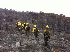 C-LM aprueba cinco planes comarcales de defensa contra incendios forestales para zonas de alto riesgo