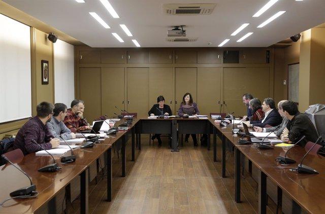 Consejo para la promoción de la accesibilidad universal