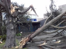 La Xunta, a la espera del resultado del expediente por los cortes de luz que causó el temporal