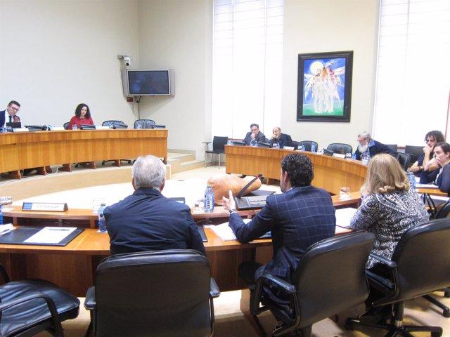 Comisión Agricultura en el Parlamento de Galicia.