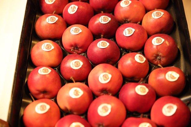 Fruta, frutas, manzana, manzanas