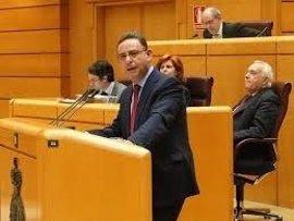 En Comú exige saber quién filtró al PP el informe de la UDEF desvelado en el juicio de la Gürtel