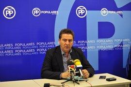 """PP cree que Lambán y Santisteve """"supeditan los intereses de los aragoneses a los de socialistas y podemitas"""""""