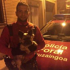 Detenida en Funes por robar un perro en Berantevilla (Álava)