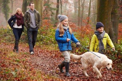 Caminar, una actividad muy recomendada